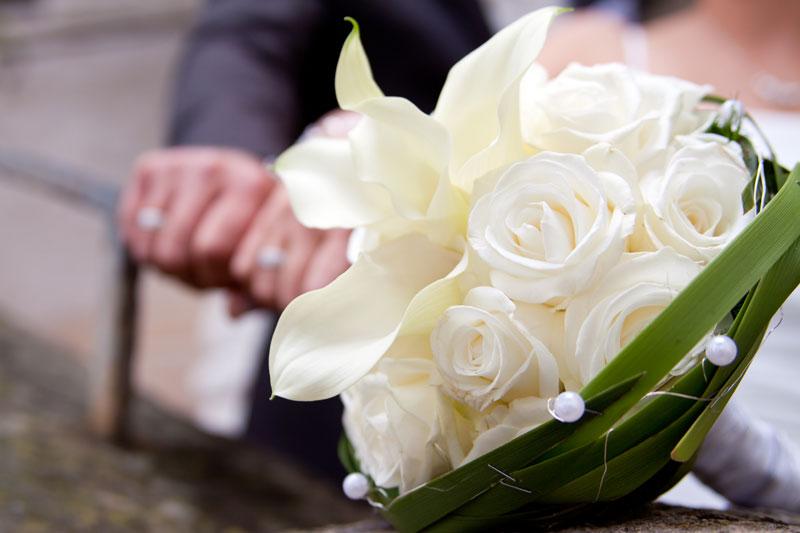 Hochzeitsplanung - Hochzeitscheckliste - hochzeitsplanung